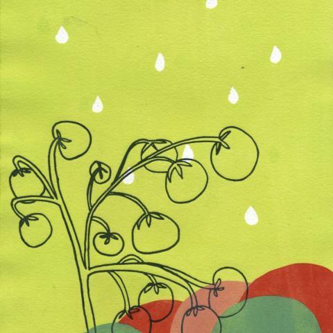 Rain, 2012