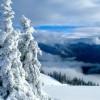 Winter at Hurricane Ridge