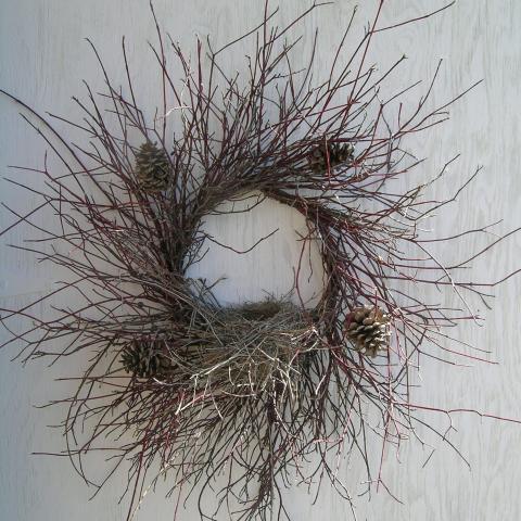 Red Osher & Birds Nest