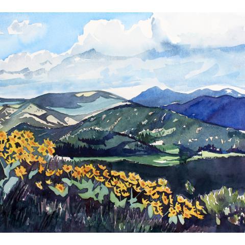 Plain Valley