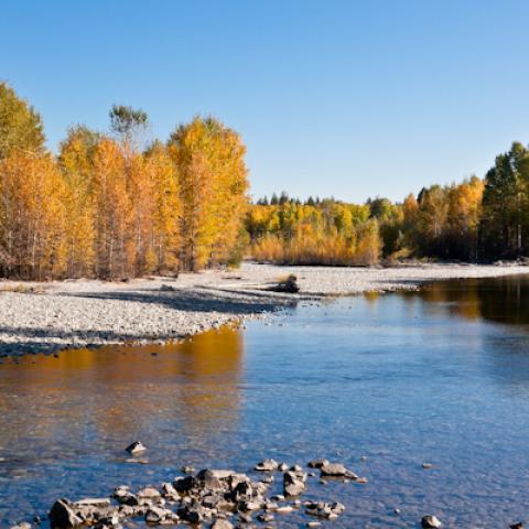 Methow River in the fall, Winthrop, WA