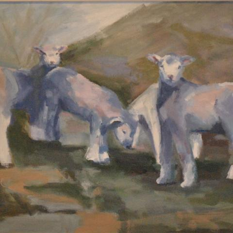 Three faces of ewe     26x22  2008