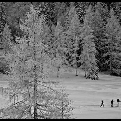 Ski Tour - Itallian Alps