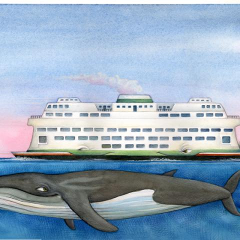 Sea Star Wishes: Ferry