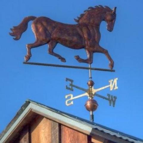 Shafer Museum Horse