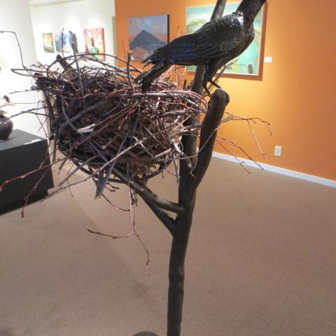 Raven Nest